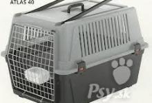 Inzercia psov: prepravny box pre vacsieho psa