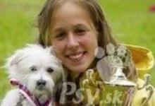 Inzercia psov: Alíkův pohár 2013