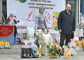 Stredoázijský ovčiak  šteniatka s PP RUSKO